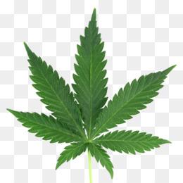 Emoji Emoticon Cannabis Png Transparente Gratis