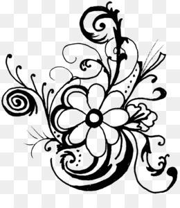 Daisy Desenho Fundo Png Imagem Png Flor Preto E Branco