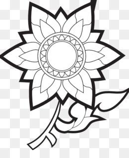 Rosa Branca Fundo Png Imagem Png Desenho De Flores Em