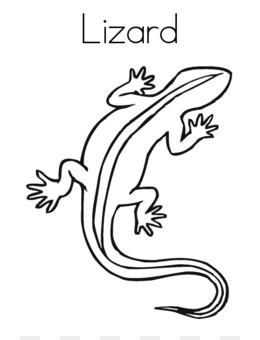 Cartoon Lagarto Fundo Png Imagem Png Reptil Livro De Colorir
