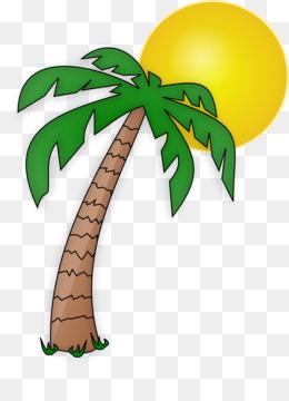 Palmeira Fundo Png Imagem Png Arecaceae Desenho De Arvore De